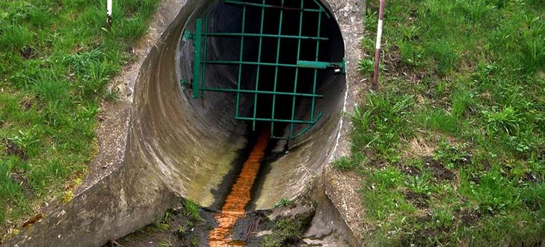 crime-ambiental