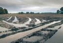 Direcionamento correto das águas pluviais colabora com o ciclo do saneamento