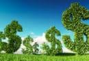 Projeto cria sistema de crédito de logística reversa para destinação de resíduos sólidos