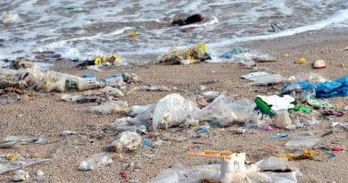 residuos-litoral-salvador